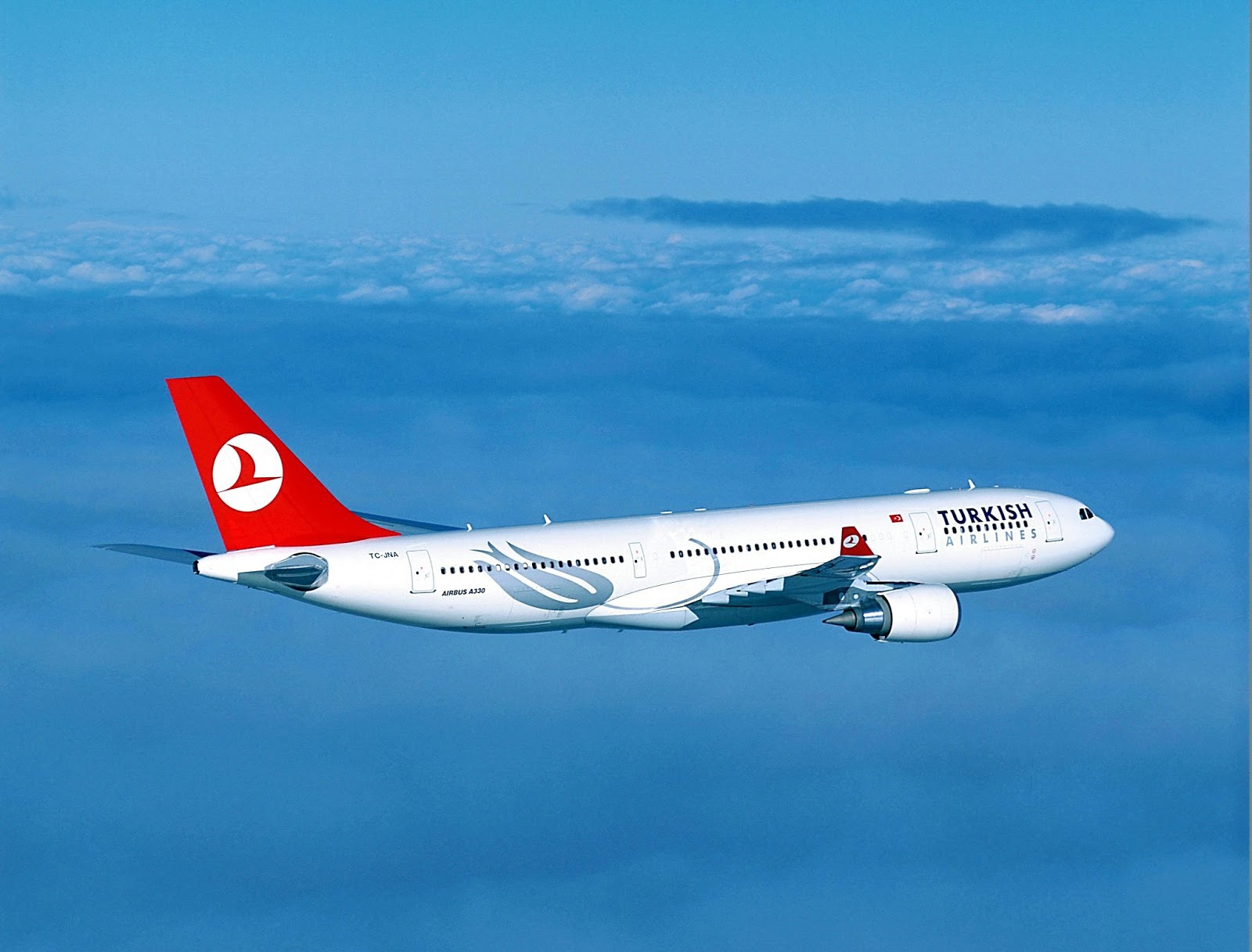 Turkish airlines online check-in pages