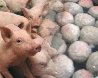 bakso babi