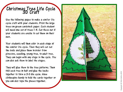 Christmas tree life cycle