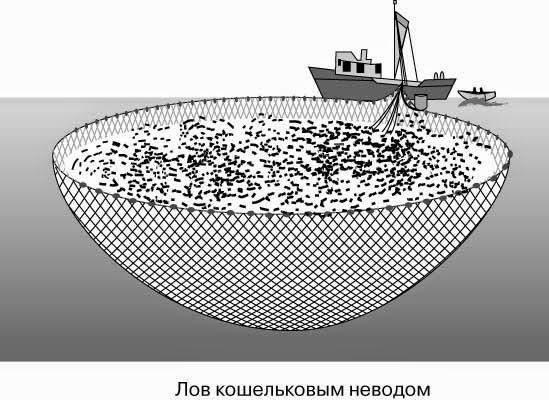 рыболовные сети и тралы