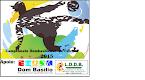 Campeonato Dombasiliense 2015