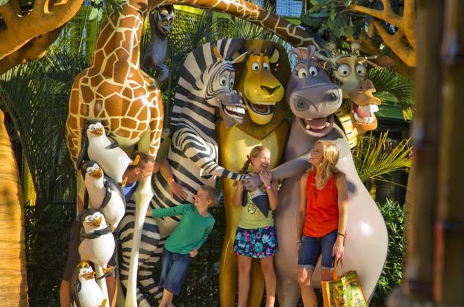 holiday in Australia, holiday in Gold Coast, Warner Bros Movie World Gold Coast, Dreamworld, Dreamworks, koala, kangaroo, Currumbin Wildlife Sanctuary