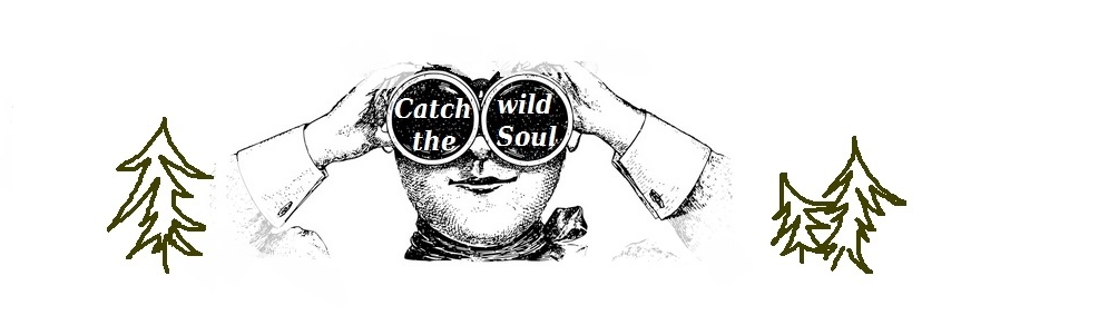 Catch the wild soul