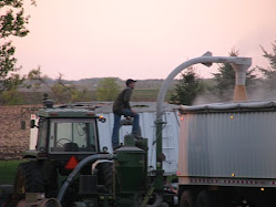 Loading Corn