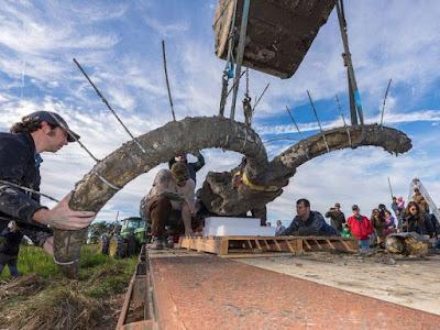 Fosil Mammoth Raksasa Berbulu ditemukan di Michigan