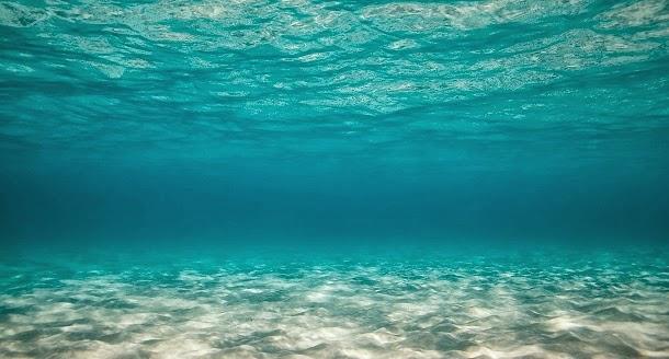 Não exploramos 95% do oceano