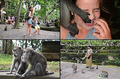 Monkey Forest Ubud 2013 rebeccatrex