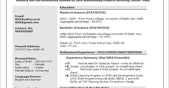 sas programmer    developer - free resume template