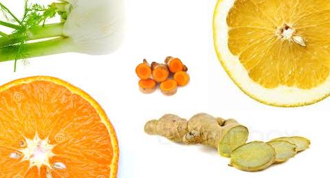 ginger,fennel,lemon, orange and turmeric