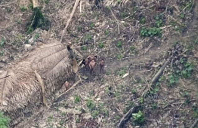 Lost tribe of 200 found in Amazon spotted by satellite