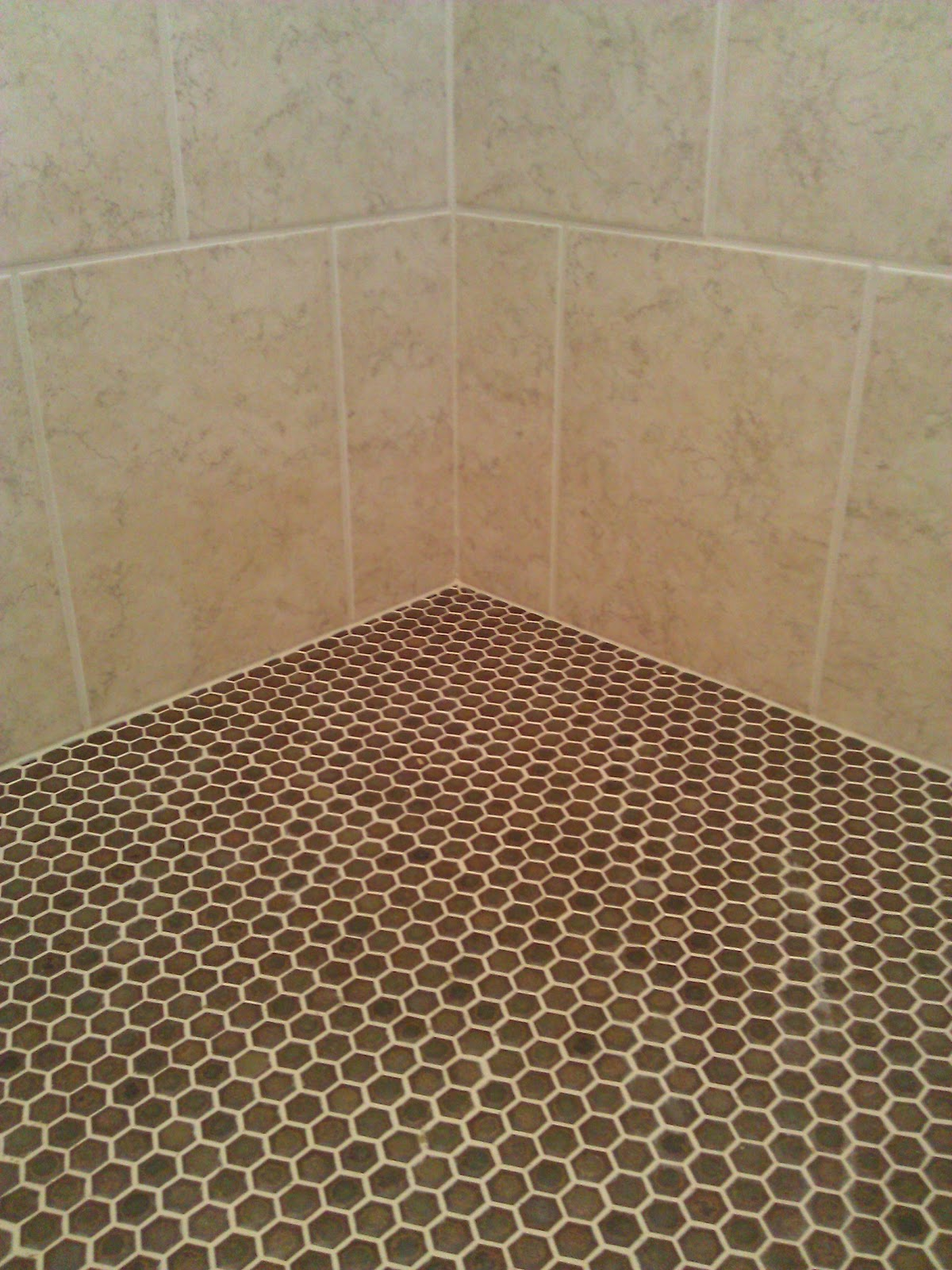 I married a tree hugger january 2012 for Shower floor tile