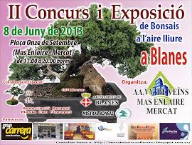 CONCURSO BLANES 2013