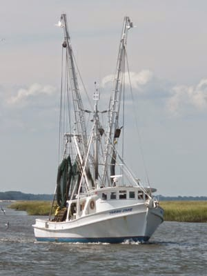 http://www.postandcourier.com/article/20150202/PC0301/150209956/1017/iop-restaurant-buys-two-tons-of-local-shrimp-for-off-season