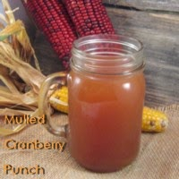Mulled Cranberry Punch