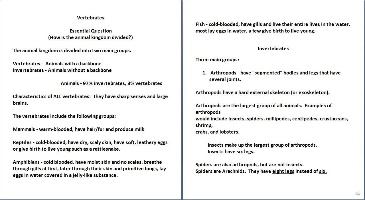 Invertebrates and vertebrates vertebrates invertebrates