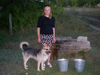 Из деревенской жизни: Пес Боза и его подружка