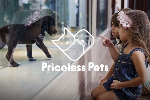 Asociación Quatro Patinhas, Animales valiosos, Priceless Pets