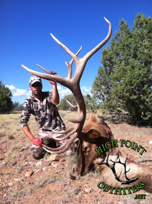 Elk Hunting Flagstaff Arizona High Point Outfitters