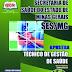 Apostila Concurso SES-MG 2014 - Técnico de Gestão de Saúde – Núcleo Temático: Administrativo