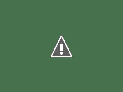 2050: cómo nos afectará el cambio climático