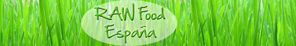 Raw Food Comida con Vida  Comida Crudivegana