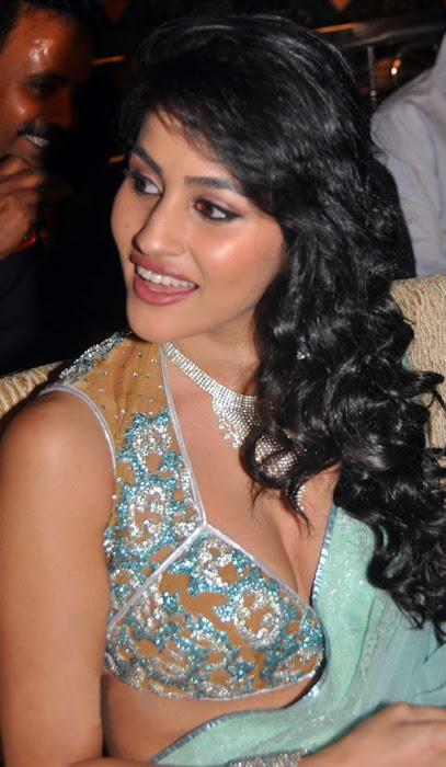 anjali lavania @ panjaa audio launch close up excl hq actress pics