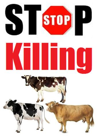 No Killing Sign