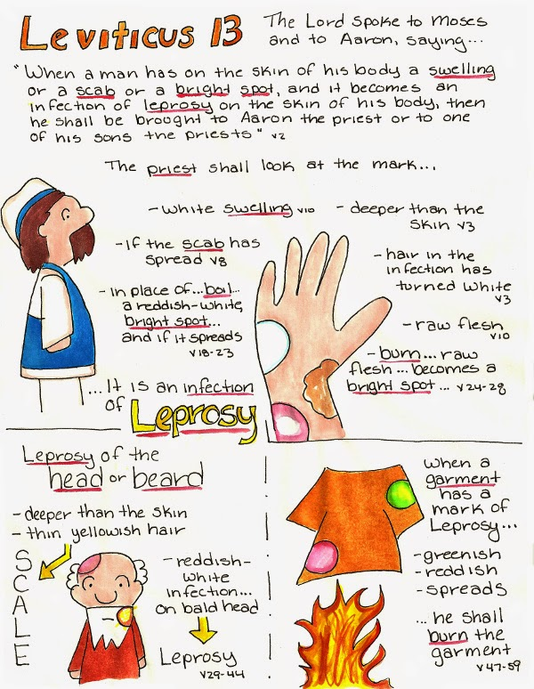 Doodle Through The Bible Leviticus 13