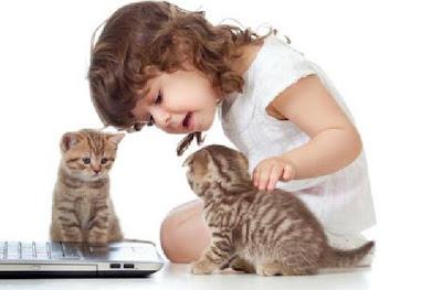 Manfaat Memelihara Kucing Bagi Kesehatan