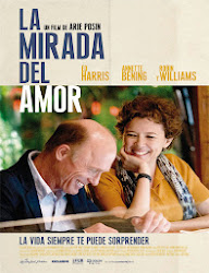 The Face of Love (La mirada del amor) (2013)