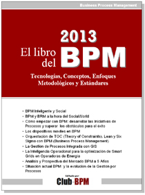 Libro del BPM 2013