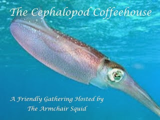 armchairsquid.blogspot.com