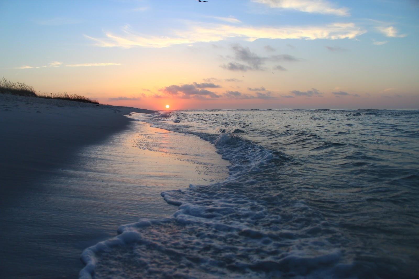 Love To Live In Pensacola Florida Pensacola Beach Webcams
