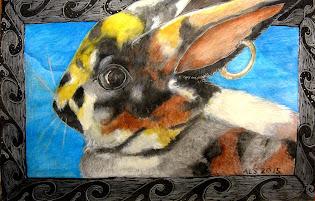 Buccaneer Bunny