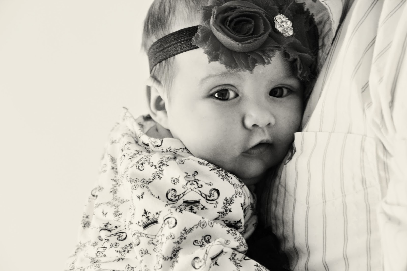 Newborn Portraits Eau Claire WI
