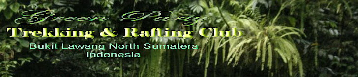 Bukit lawang Best Travel Guide Green Party North Sumatera Indonesia