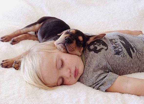 Perros durmiendo con niños muy gracioso