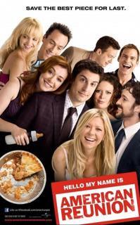 American Pie: El Reencuentro (2012) Español Latino
