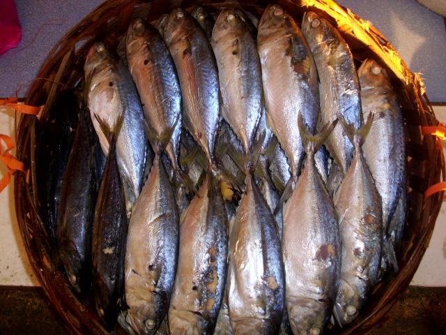 ikan rebus/lengat: Ikan Rebus/Lengat