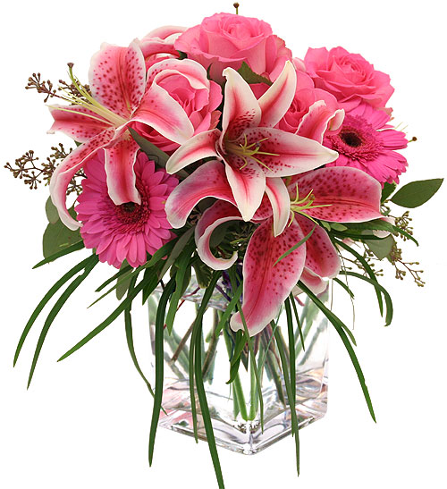 Anh dep hoa sinh nhat