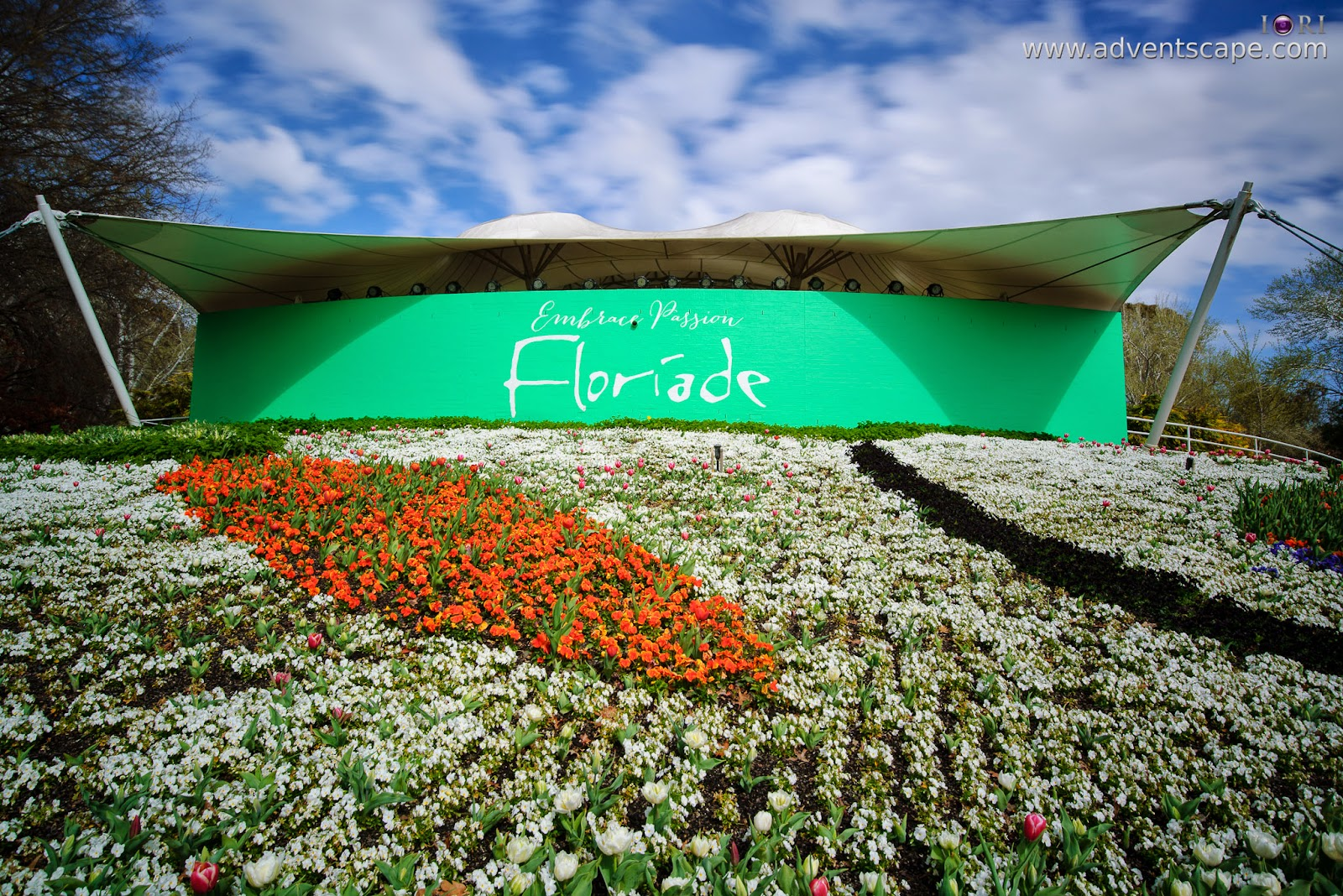 Philip Avellana, iori, advenscape, Floriade, 2014, spring festival, Canberra, ACT, Australian Capital Territory, park, flowers, blossom, Stage 88 Lawns