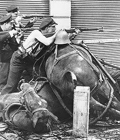 Spanish civil war essay