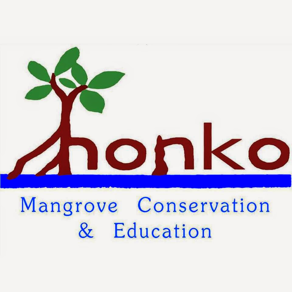 Honko Mangrove Conservation & Education Vacancy: Volunteer - Ambondrolava, Madagascar