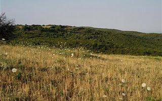 αγρος