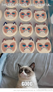 Grumpy Cat meets Queen. Grumpy Cat meets Queen. Inevitable. freddie grumpy