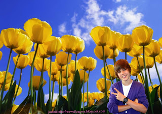 Justin Bieber Teen Singer Wallpaper of Justin Bieber Salutes the fans at Tulips Flowers Field desktop wallpaper