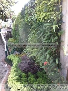 Jasa Pembuatan Taman Vertikal Murah - Vertikal Garden - Tanaman Dinding Harga Murah Bergaransi