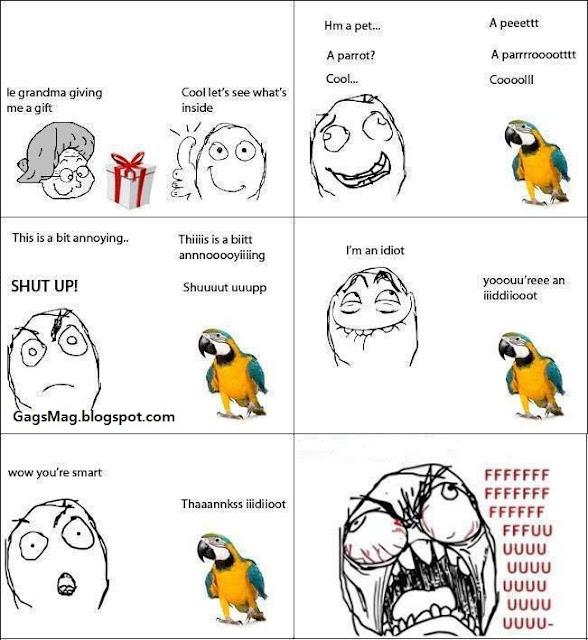 grandma talking parrot troll
