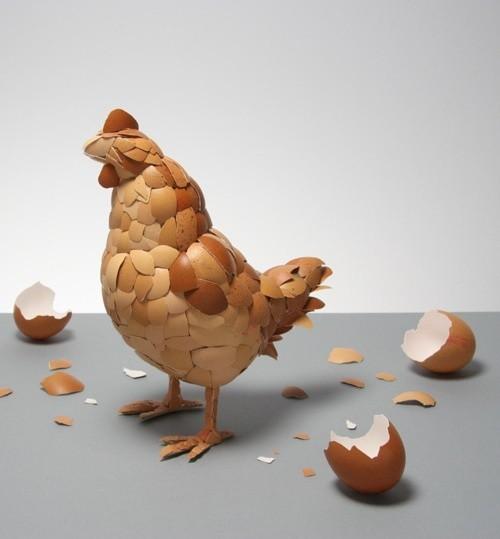 Egg hen