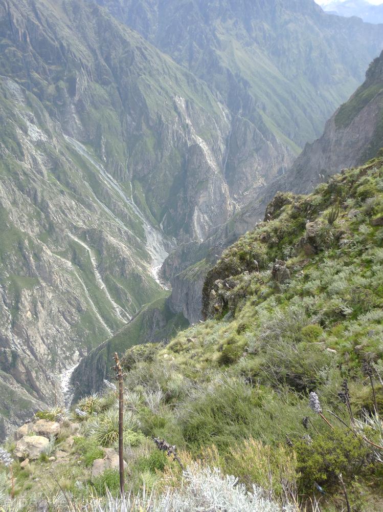 Cañón del Colca Valle de Colca